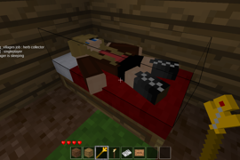 villager sleeping at night