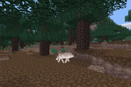 Just a wolf minding its own business in a taiga